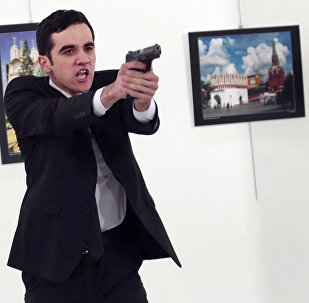 Assassino do Embaixador da Rússia