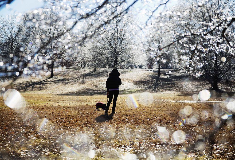 Uma mulher passeia com seu cachorro em um dos parques de Atlanta