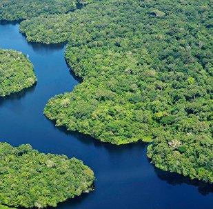 Amazônia (arquivo)