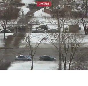 Veado corre da polícia em São Petersburgo