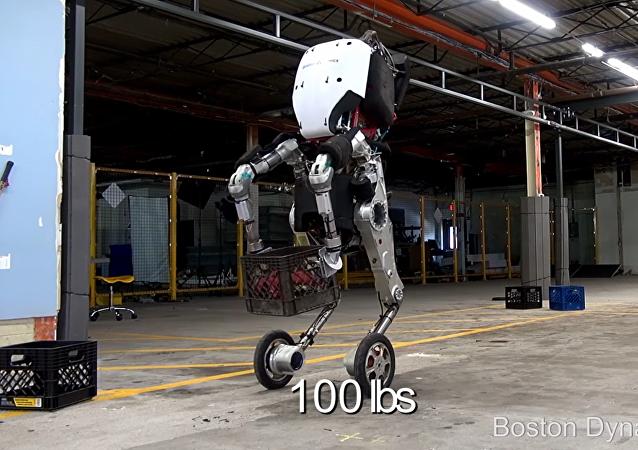 Conheça Handle, o robô 'omnipotente'
