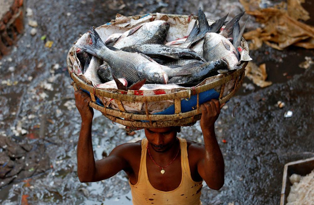 Homem carregando cesta com peixe em um mercado na Índia