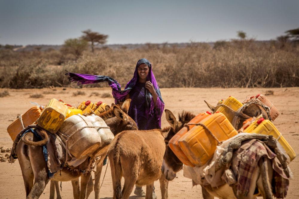 Mulher com burros que carregam latas vazias na Somália