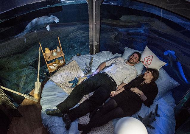 Alister Shipman da Grã-Bretanha e Hannah Simpson da Irlanda do Norte são vencedores da competição do site Airbnb estão na cama no Aquário de Paris em 11 de abril, 2016.