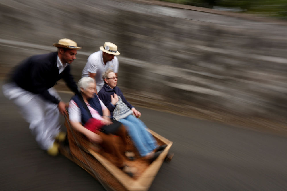 Corredores portugueses puxam trenó com turistas no Funchal, Portugal