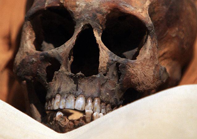 Crânio de múmia (foto de arquivo)