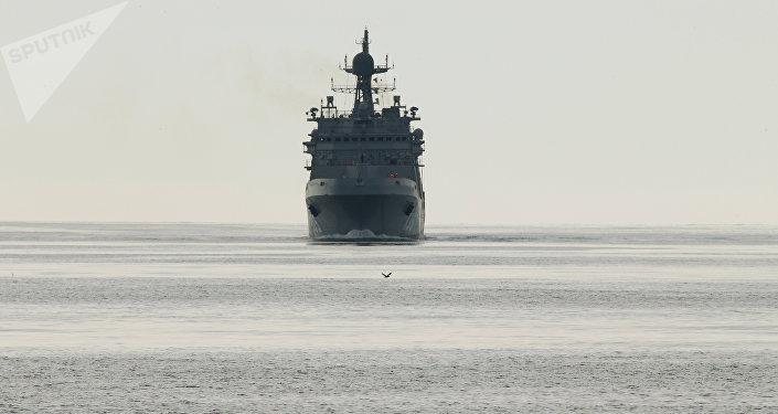 Navio de desembarque do projeto 11711, Ivan Gren (foto de arquivo)