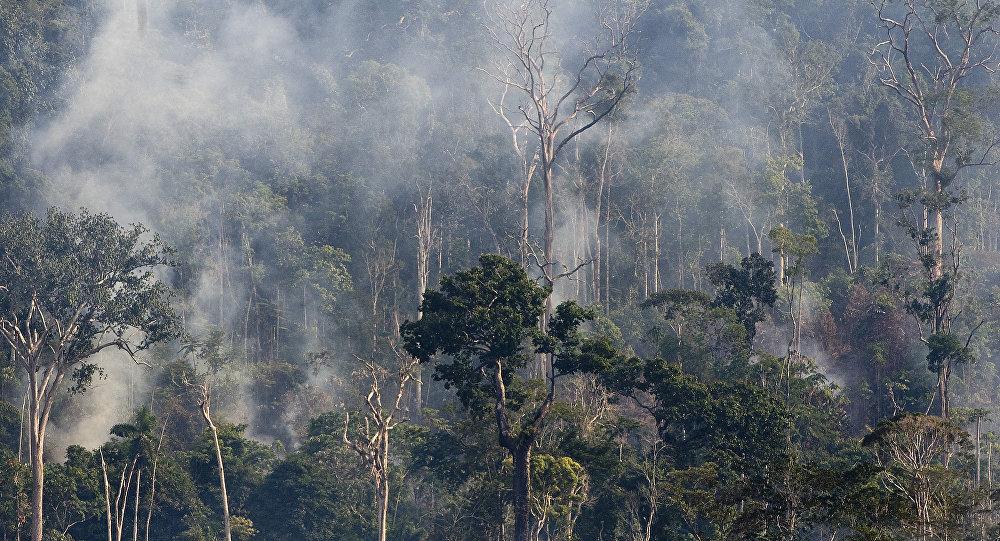 Rastreamento por satélite mostra aumento das queimadas na Amazônia
