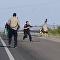 Ema tira 'sarro' de policiais em uma rodovia nos EUA