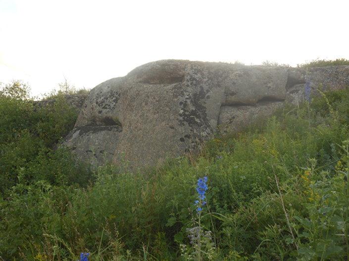 Pedra muito antiga parecida com um grifo foi encontrada nas Montanhas de Altai, na Rússia