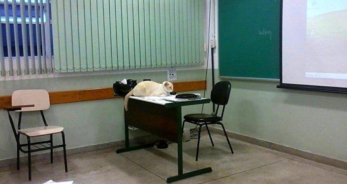 A mesa dos professores também é um dos lugares que Branco mais gosta durante as aulas de TI