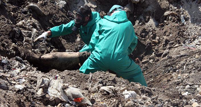 Cova coletiva na Síria (Arquivo)