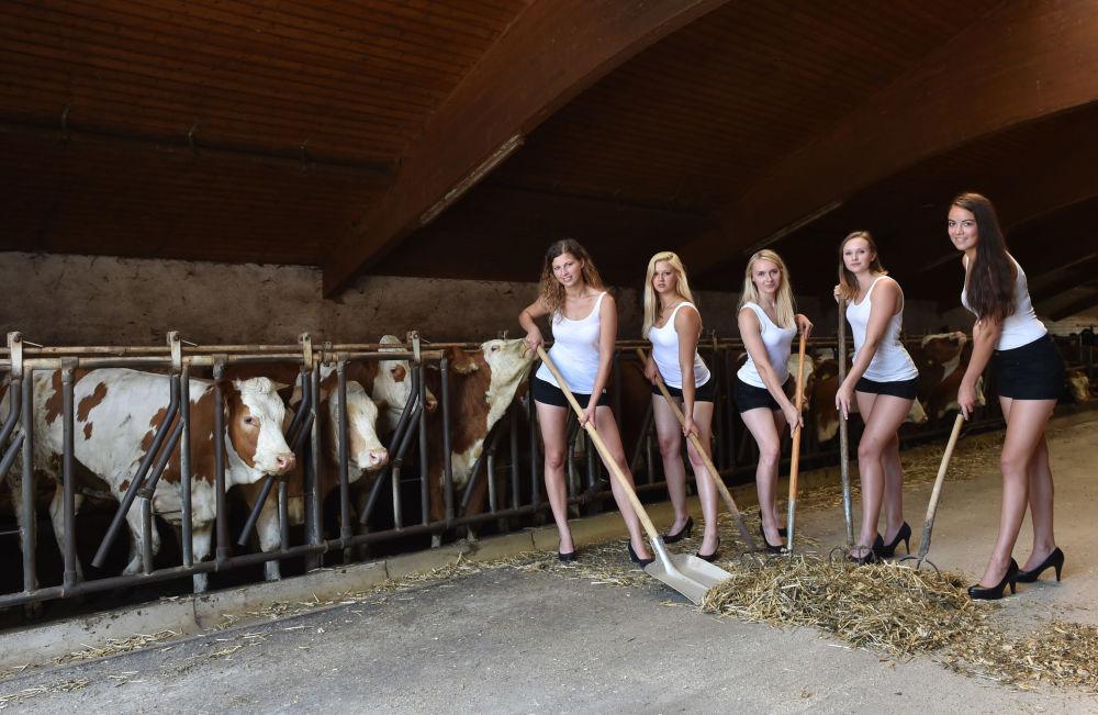 Modelos participam de sessão de fotos num estábulo, Alemanha