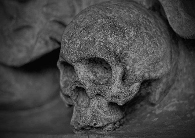 Crânio (imagem referencial)