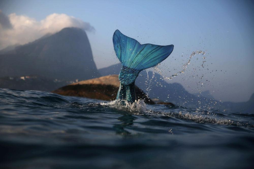 Sereia e instrutora de mergulho Luciana Fuzetti treinando vestida com cauda de sereia nas Ilhas Tijucas no Rio de Janeiro, em 22 de julho de 2017
