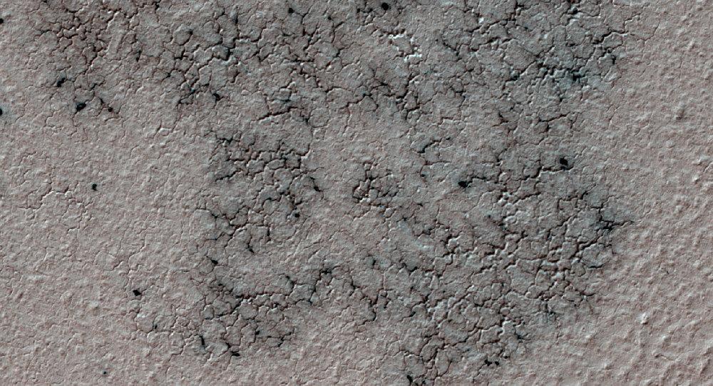 Aranhas marcianas