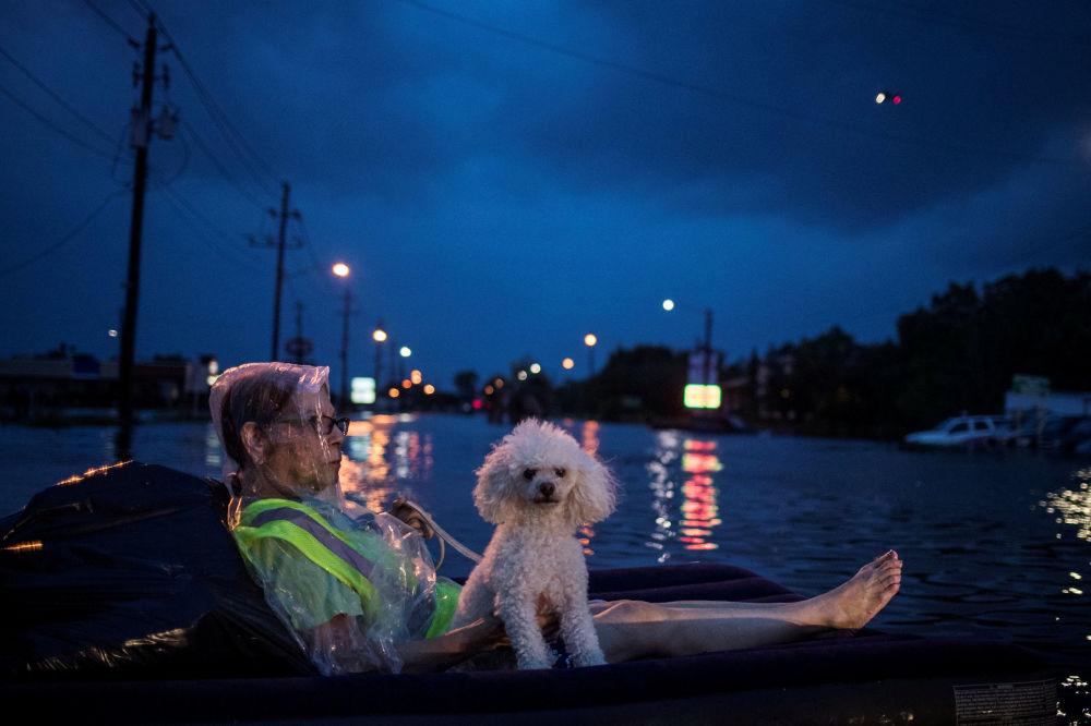 Mulher com seu cachorrinho esperam evacuação em Houston, Texas, EUA
