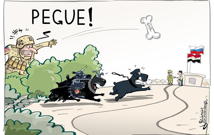 Cuidado, cães furiosos dos EUA estão à solta!