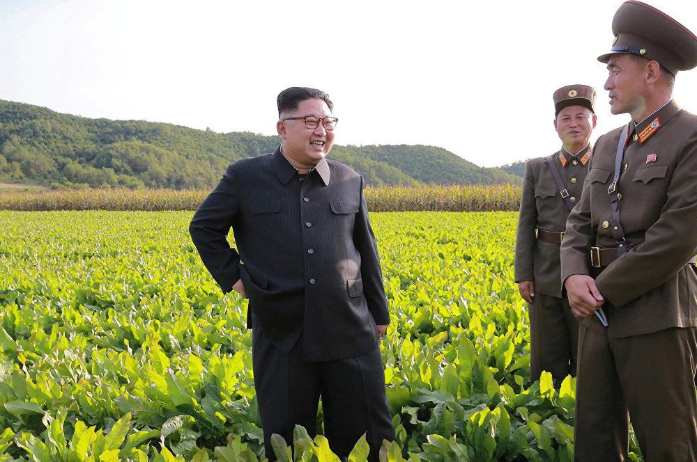 O objetivo é que a Fazenda Número 1166 produza sementes com maior produtividade.