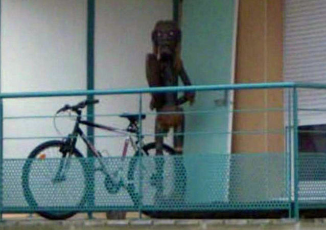Foto de uma criatura tirada pelo Street View na cidade francesa de Nancy