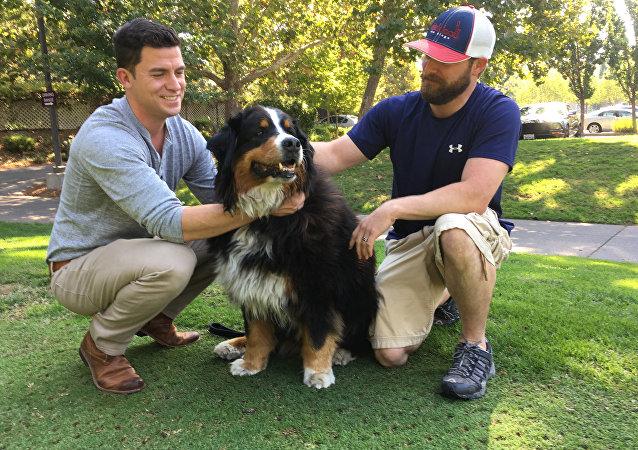 Jack Weaver e seu cunhado, Patrick Widen, com Izzy, cadela de 9 anos que desapareceu durante incêndio na Califórnia