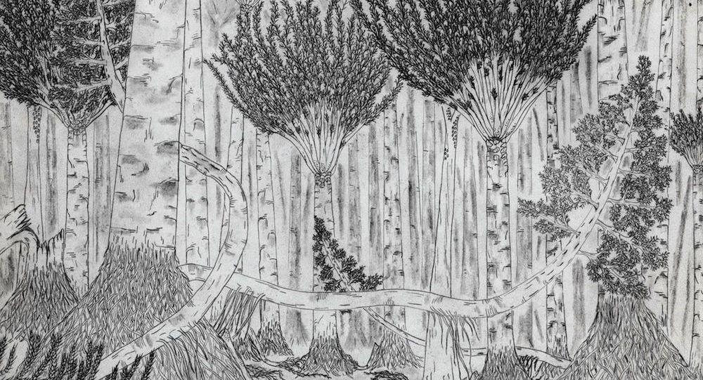 Floresta devoniana (imagem ilustrativa)