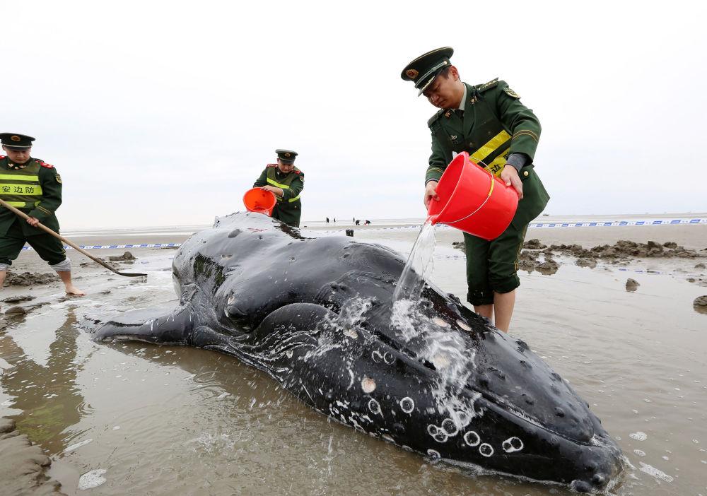 Policiais chineses põem água sobre boleia encontrada na praia