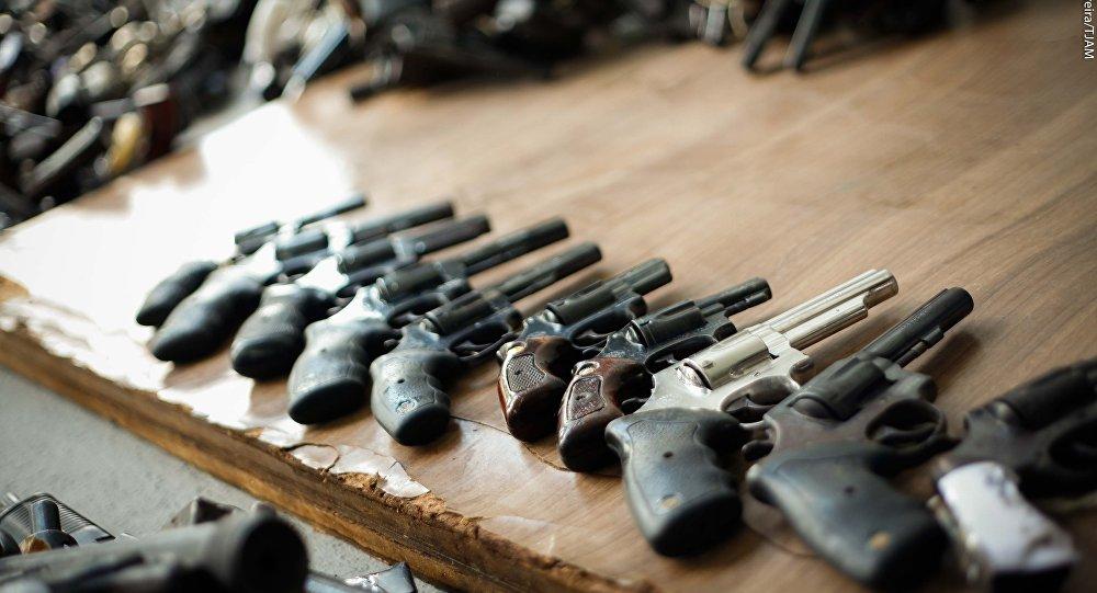 Parte de bancada do Senado propõe plebiscito sobre revogação do Estatuto do Desarmamento