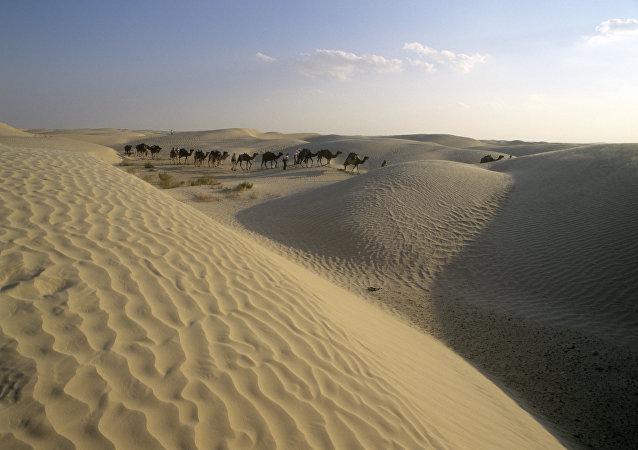 Caravana de camelos em deserto (imagem referencial)