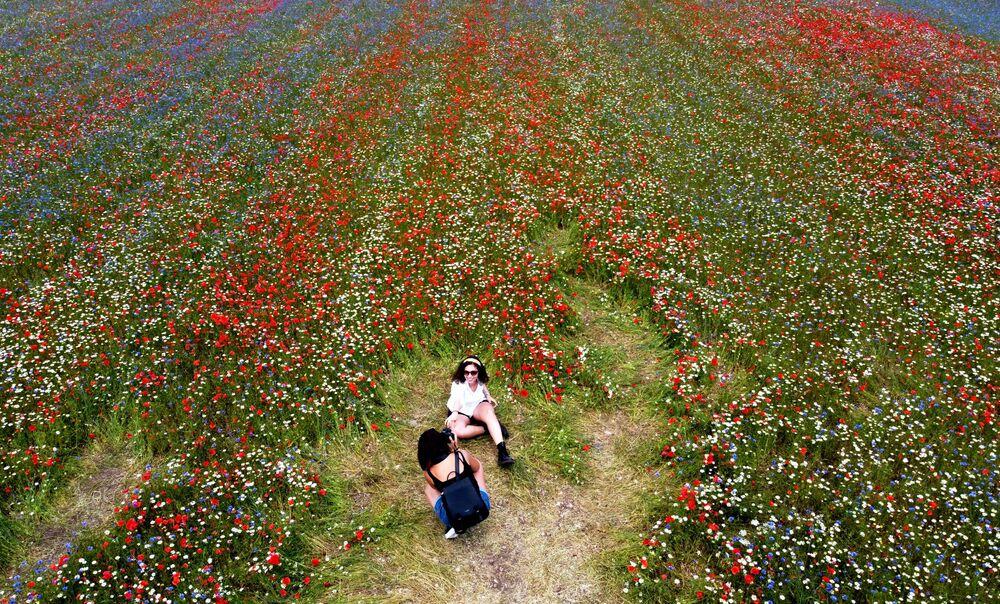 Mulheres em campo de flores próximo ao vilarejo de Castelluccio, na Itália