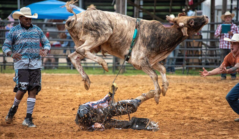 Touro derruba homem durante rodeio no estado norte-americano do Mississipi
