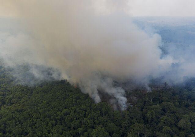 Queimada na Amazônia perto da BR-163 no Pará