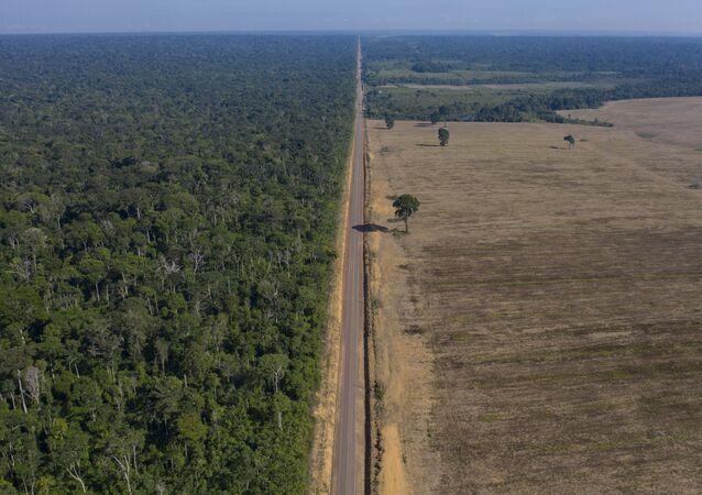 BR-163 divide trecho da Floresta Nacional do Tapajós e uma plantação de soja em Belterra, no Pará