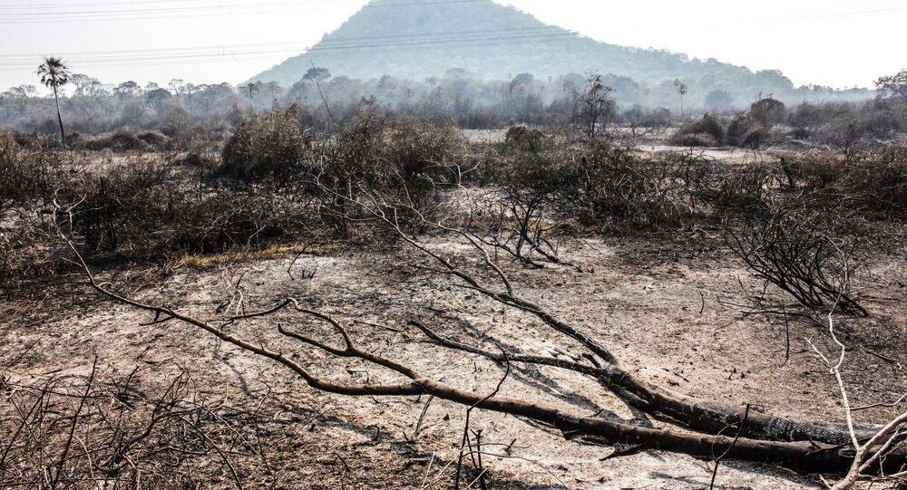 Incêndio florestal atinge vegetação do Pantanal entre as cidades de Miranda e Corumbá, no Mato Grosso do Sul.