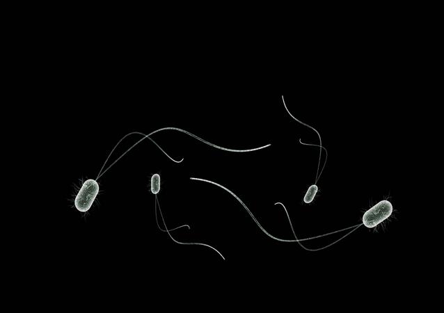 Imagem de micróbios