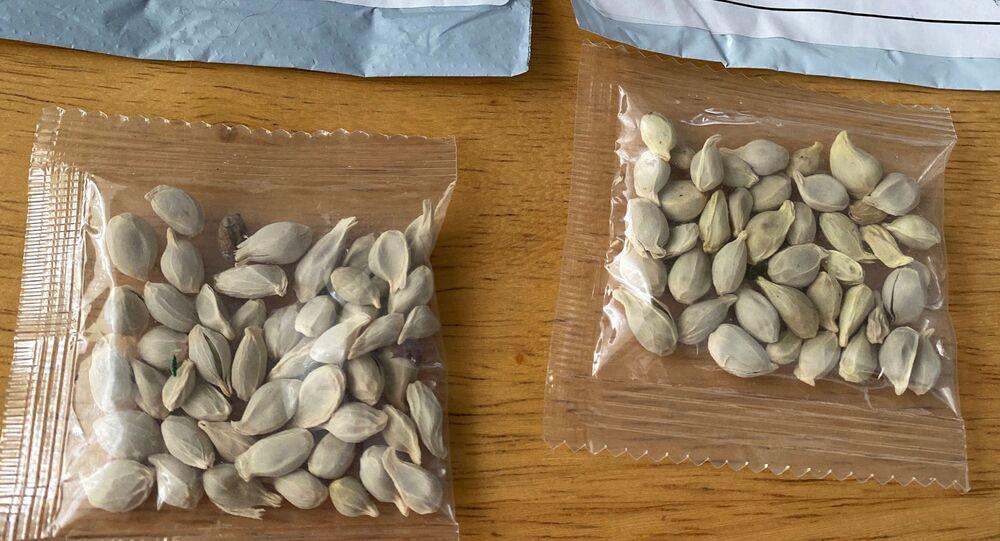 Pacotes de sementes misteriosas recebidos nos Estados Unidos apreendidos pelo Departamento de Agricultura do Estado de Washington em julho