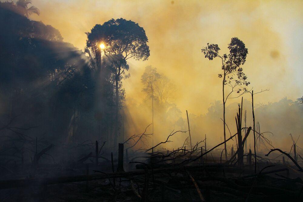 Área consumida pelo fogo que atinge a floresta amazônica no estado do Amazonas