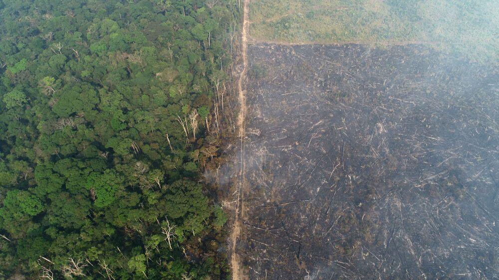 Foto de vista aérea revela o impacto da destruição em área afetada por incêndio na floresta da Amazônia, em 11 de agosto