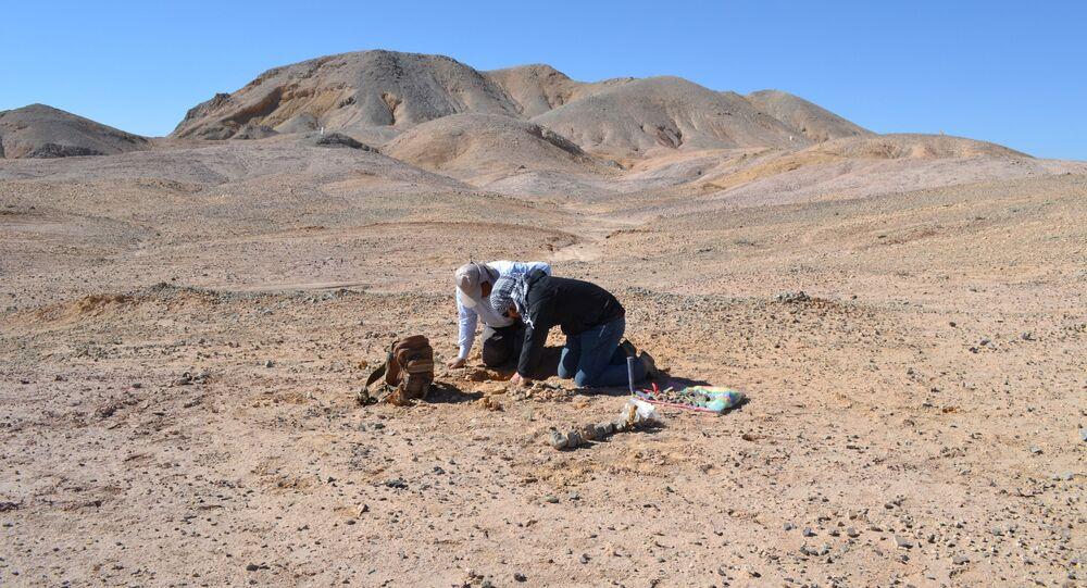 Pesquisadores da Universidade do Chile e do Museu de História Natural e Cultural do Deserto de Atacama no sítio