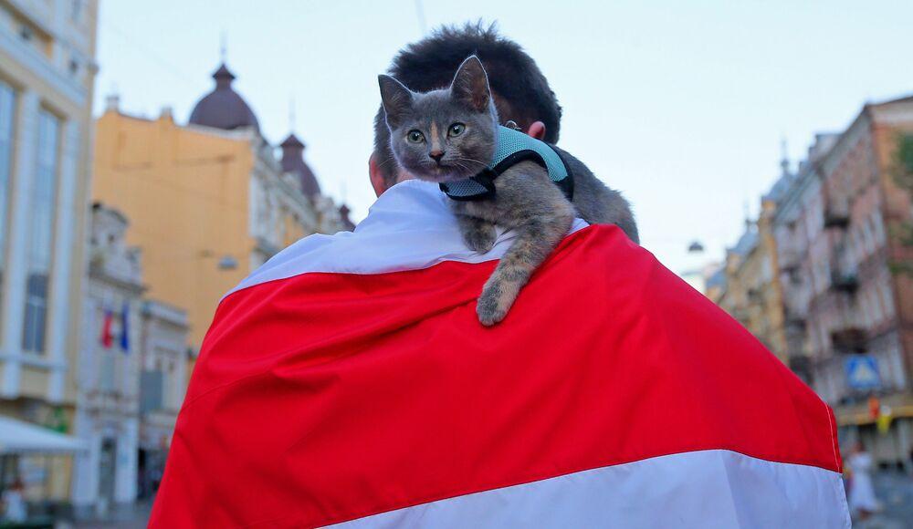 Manifestações em Kiev, na Ucrânia, em apoio aos manifestantes na Bielorrússia