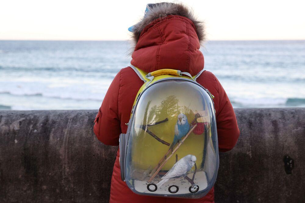 Mulher com papagaios em sua mochila junto ao mar em Sydney, Austrália