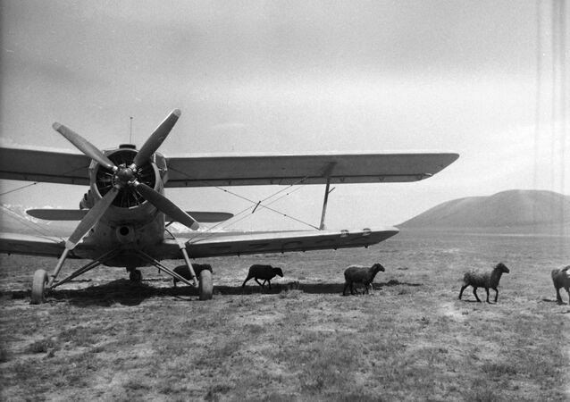 Avião An-2 entregando um rebanho de ovelhas da fazenda coletiva por comemoração do XXII Congresso do Partido Comunista da União Soviética em um pasto de verão nas montanhas, República Socialista Soviética Uzbeque, URSS, 1967