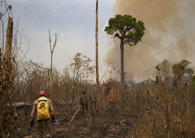 No estado brasileiro do Pará, perto da cidade de Novo Progresso, bombeiros e soldados trabalham no controle de um incêndio em área desmatada por pecuaristas, em 23 de agosto de 2020.