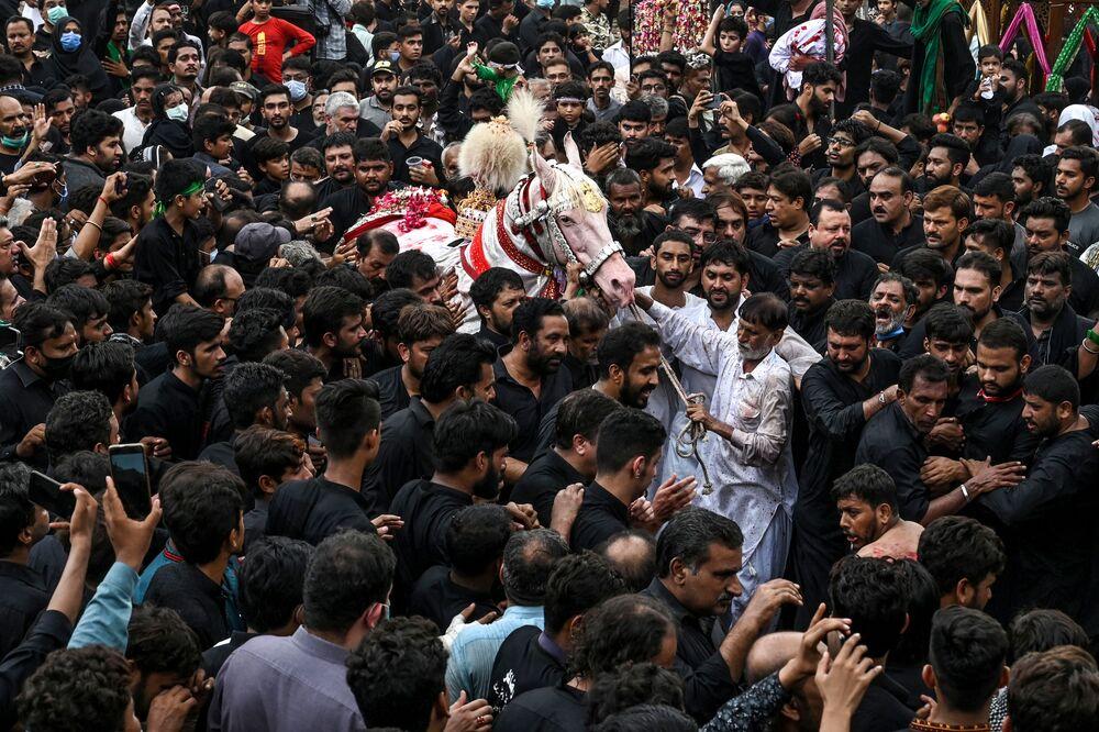 Xiitas tentam tocar em um cavalo branco durante o festival Ashura no Paquistão