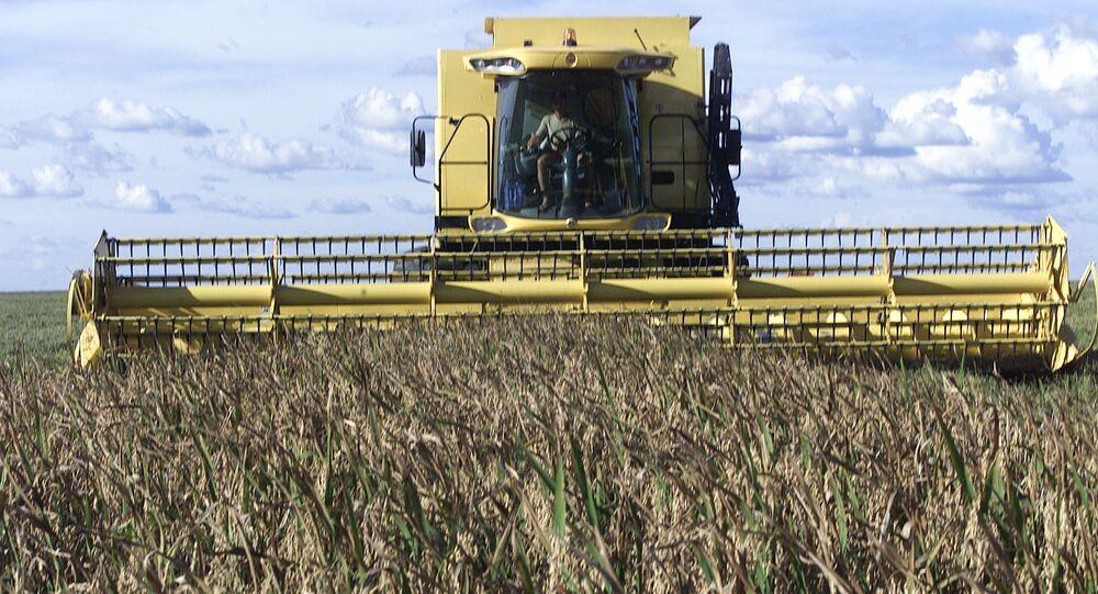 Máquina agrícola fazendo colheita de arroz, em Uruçuí (PI)