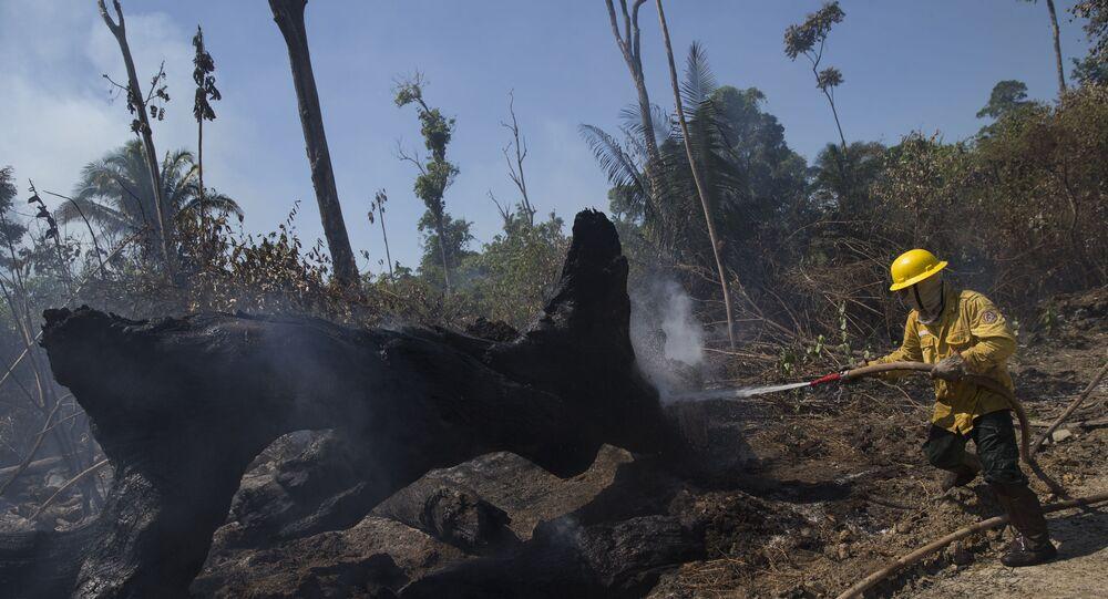 Membros da brigada de incêndio do Instituto Brasileiro do Meio Ambiente e dos Recursos Naturais Renováveis (Ibama) tentam controlar fogos de queimada na floresta Amazônica, no município de Novo Progresso, no estado do Pará
