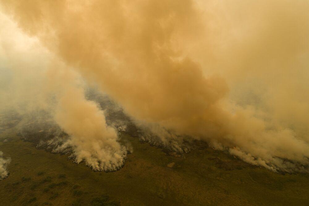 Vista aérea de fogo consumindo floresta no Pantanal