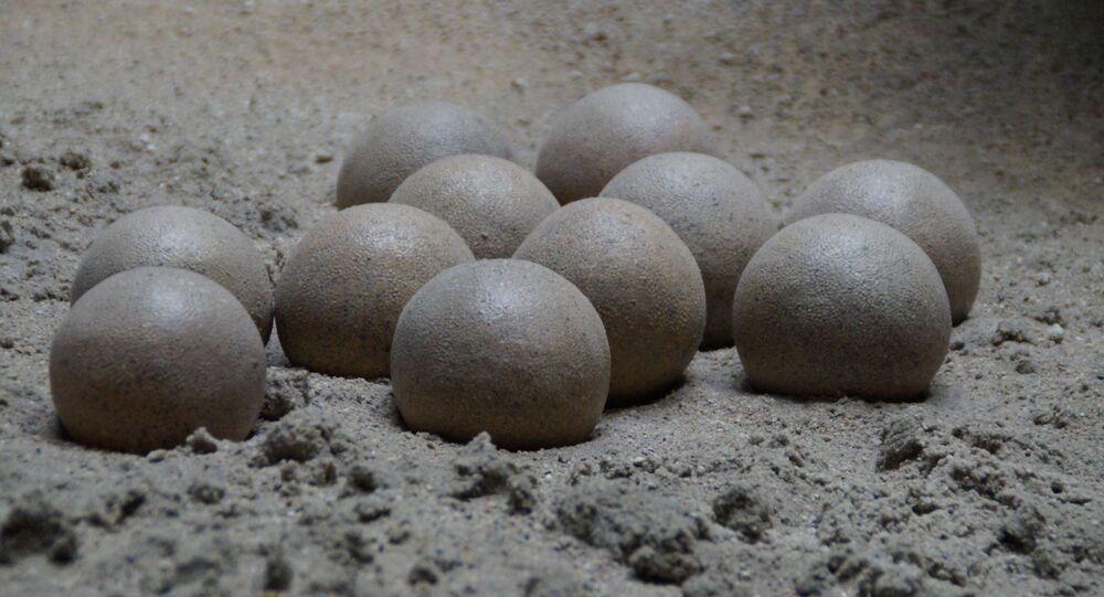 Ovos de dinossauro (imagem referencial)