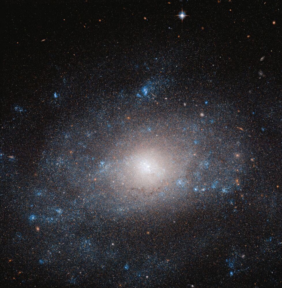 Registro de galáxia espiral NGC 5585 na constelação Ursa Maior
