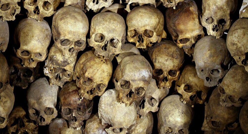 Esqueletos (imagem referencial)